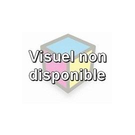 toner compatible S050197 cyan pour Epson Aculaser C9100