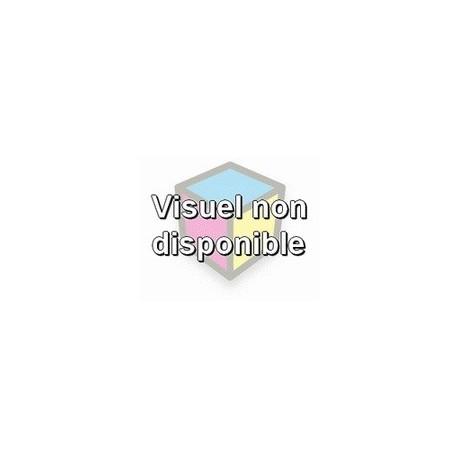 cartouche cyan pour imprimante Epson Stylus D78 équivalent C13T071240